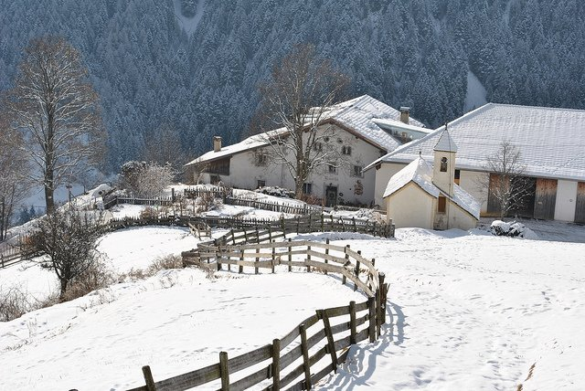 IN PICTURES: Italy's first snowfall of the season