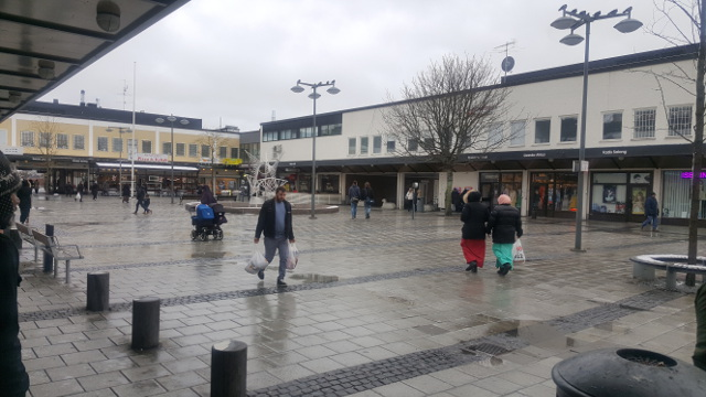 'A question of education': What Rinkeby residents think about the riots