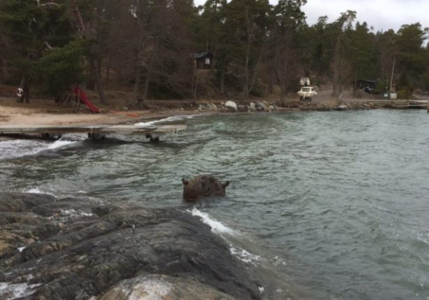 Mine found near Stockholm swimming spot contained explosives