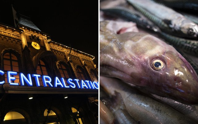 Gothenburg 'bomb' turned out to be pile of fish
