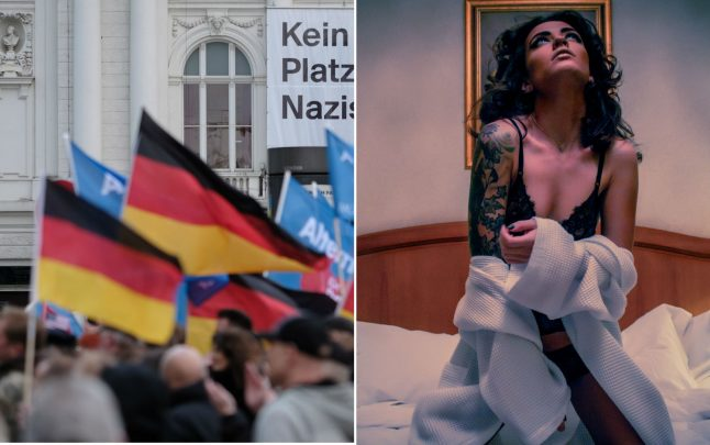 AfD voters are the most adventurous in bed, study claims