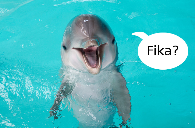 Swedish startup's tech could help us talk to dolphins