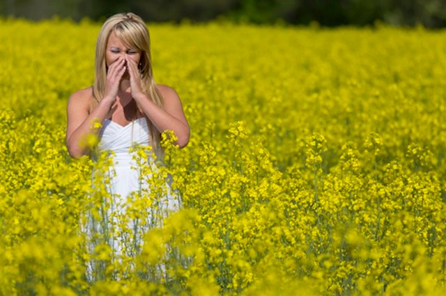 Got allergies in Sweden? Here's the guide for you