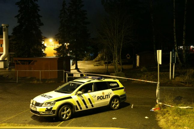 Youth gangs behind repeated Oslo trouble: police