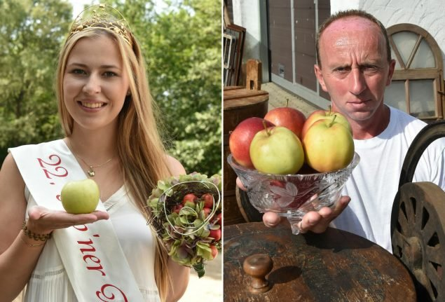Man takes east German town to court for not crowning him Apple Queen