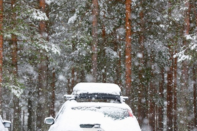 Sweden issues weather warning for snow and strong winds
