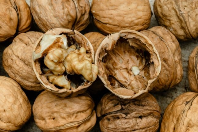 Walnut trees allowed to shed their nuts on cars, Frankfurt court rules