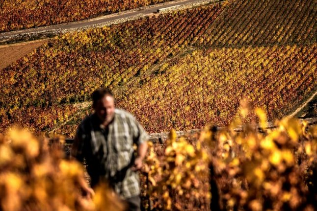 Santé! France enjoys record year for wine and spirits exports