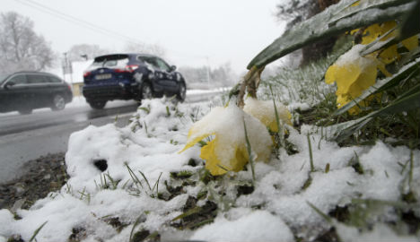 Record cold March in parts of Sweden: SMHI
