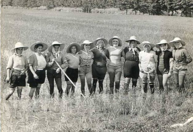 How women weeding Italy's rice fields took on fascism and became heroines of the left