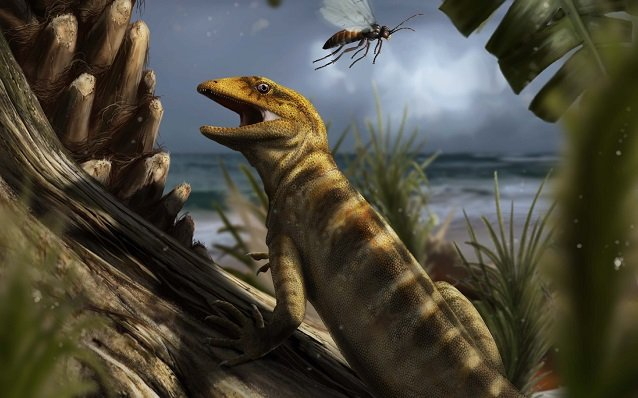The oldest known lizard has been discovered in the Italian Alps