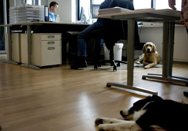 6 things you need to know about Danish working culture