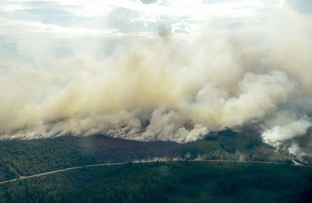 Sweden's wildfires halved overnight and rain might be on the way