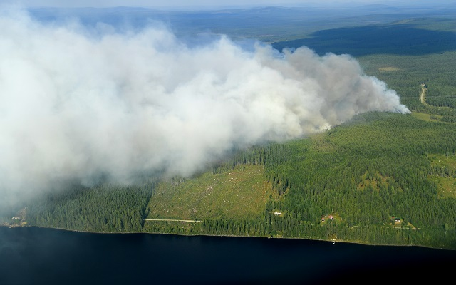 Some of Sweden's wildfires 'impossible to extinguish'