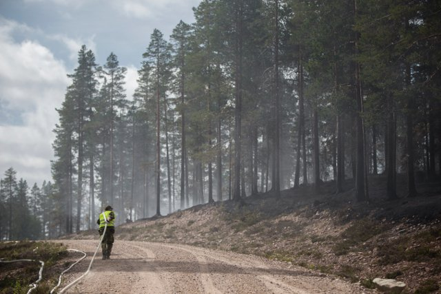 Wildfires put climate on the agenda in Swedish election