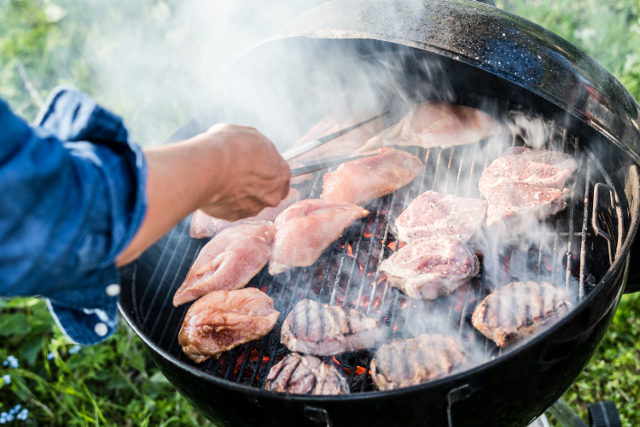 Man fined for breaking southern Sweden's BBQ ban