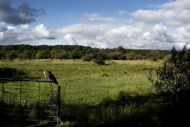 Denmark's plants and wildlife to get own website