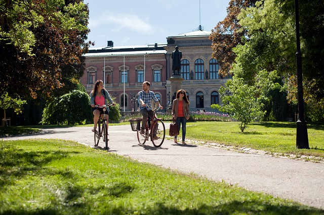 Are you applying for Erasmus in Sweden? Here are ten crucial things to know
