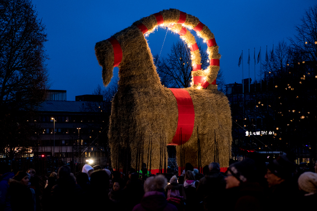Sweden's ill-fated Christmas goat survives again
