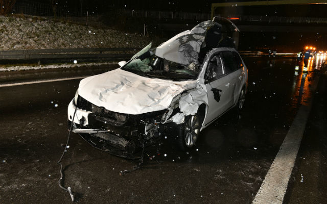 Driver killed in collision with stray horses on Swiss motorway