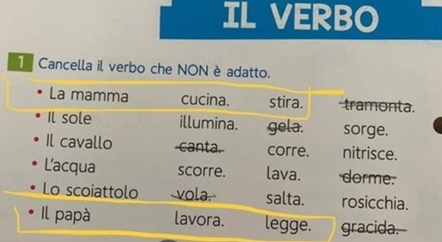 'Mum cooks, Dad works': Italian school textbook triggers outrage