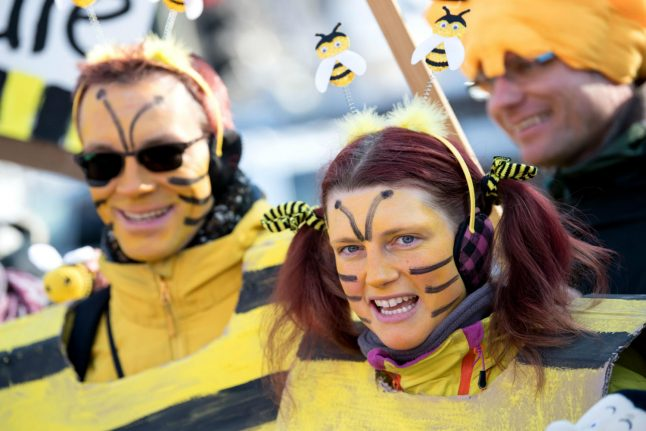 Bavaria celebrates most successful referendum ever – to save its bees
