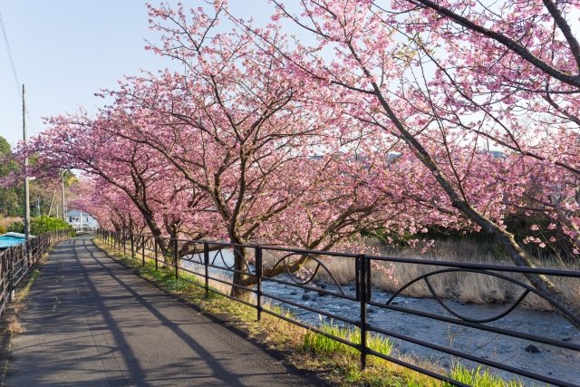 11 sure-fire ways you know it's spring in Switzerland