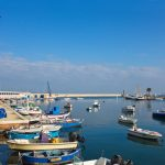 The southern Italian city ranked among Europe's best summer destinations by Lonely Planet