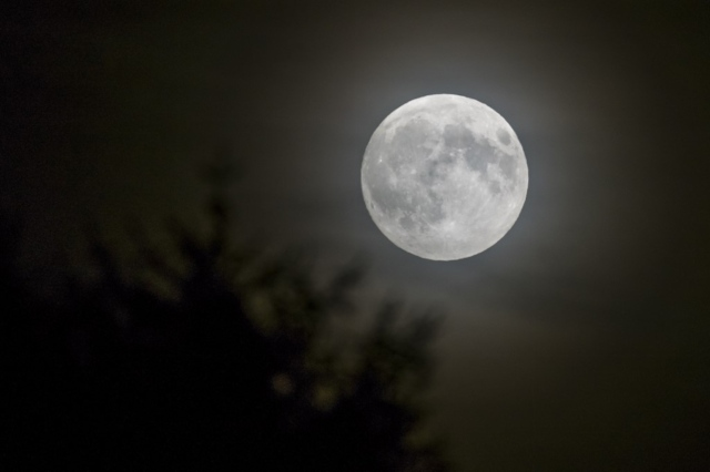Moon not to blame for madness: Swiss study