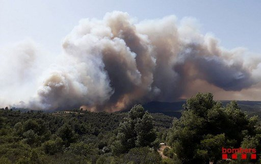 IN PICS: Wildfire rages across Tarragona as Spain gripped by record-breaking heatwave
