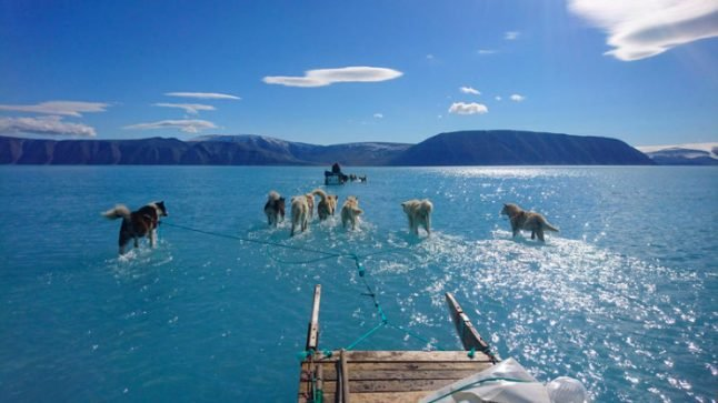 Greenland changes increase fears of another devastating year for Arctic
