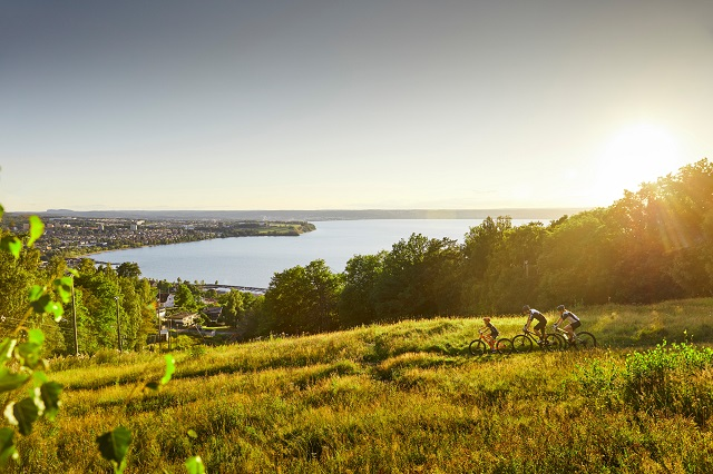 Flygskam: Are Swedes really going green and swapping overseas travel for 'staycations'?