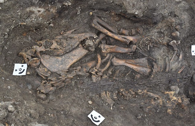 Two rare burial ships uncovered in Sweden