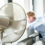 'Employees have a right to work from home': Calls for German heatwave action plan