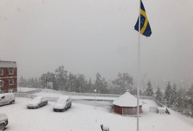 First snow falls as winter arrives in northern Sweden