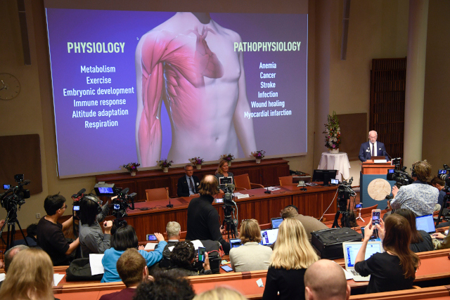 Brit and Americans share Nobel Prize in Physiology or Medicine