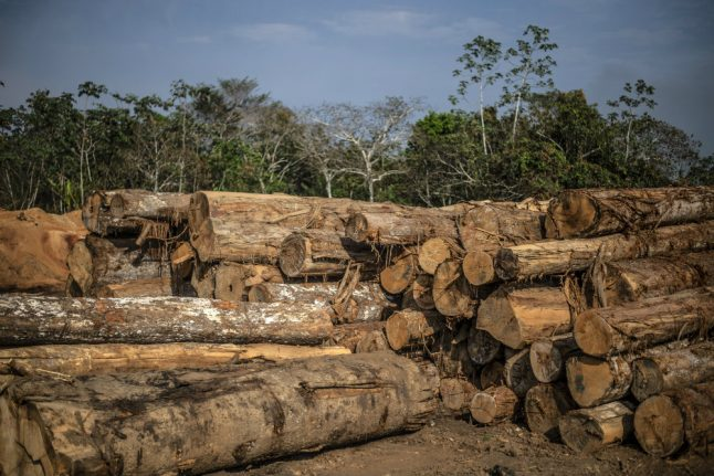 How Norway paid South American country not to chop down rainforest