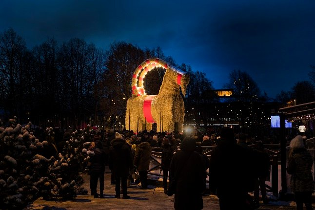 IN PICTURES: Sweden's infamous Christmas goat returns for the festive season