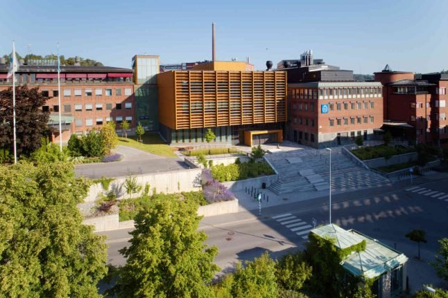 Swedish youth faces trial for Columbine homage attack plot