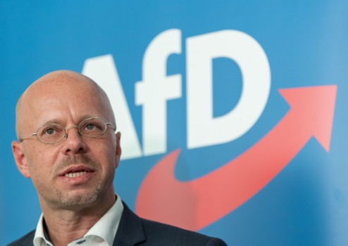 Court halts AfD attempt to throw out far-right figurehead