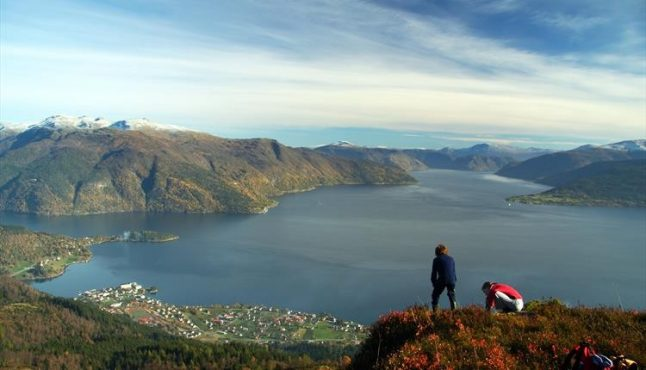Foreigners in Norway plan summer 'staycation': Survey