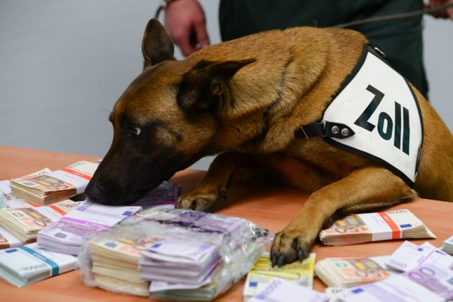 Meet the German airport dog sniffing out huge bundles of cash