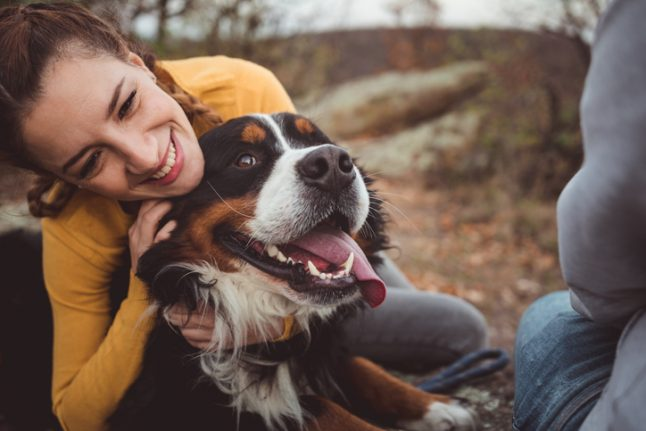 How owning a dog makes you more 'German'