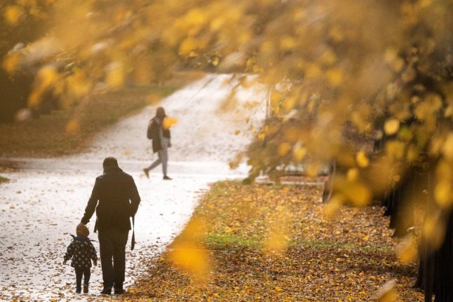 What you need to know about Germany's new parental benefits reforms
