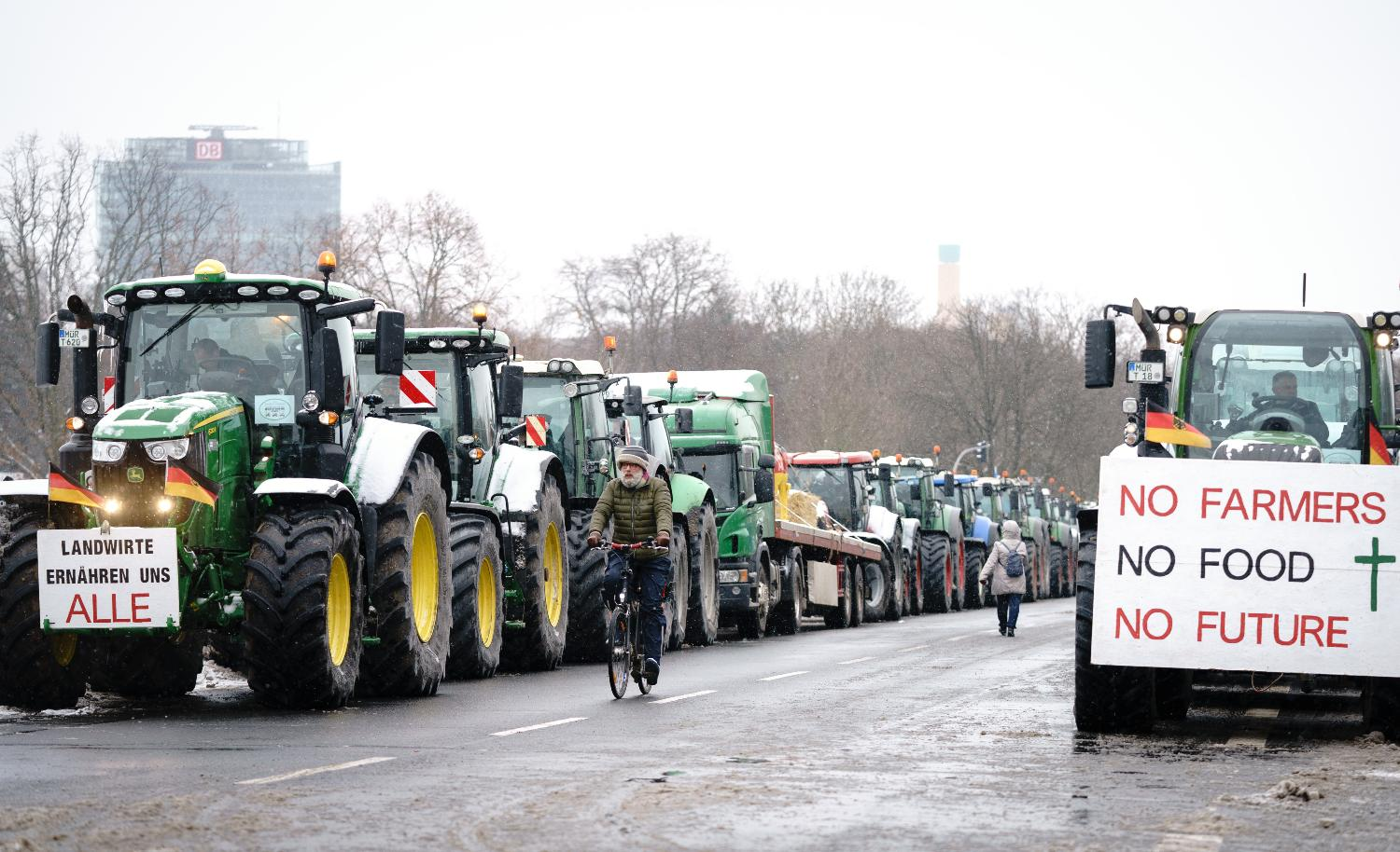 'No food, no future': German farmers protest against insect protection plans