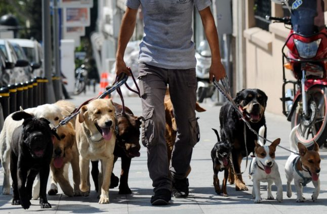 Reader question: In lockdown areas of France, when can I walk my dog and how far can I go?