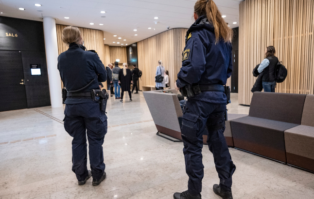 Sweden jails Isis mother who took two-year-old son to Syria