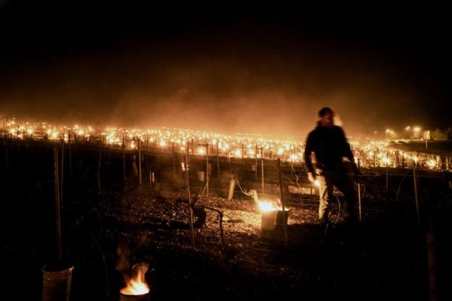 IN PICTURES: French vineyards ablaze in bid to ward off frosts