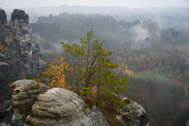 VIDEO: Watch Germany's 7 natural wonders for Earth Day
