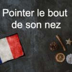 French phrase of the day: Pointer le bout de son nez